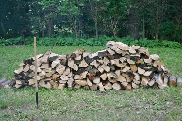 Danny's wood pile!